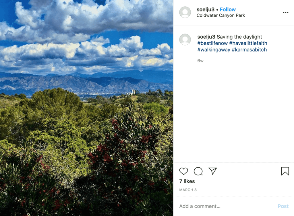 instagram scenic drives of los angeles coldwater canyon drive views la trees nature