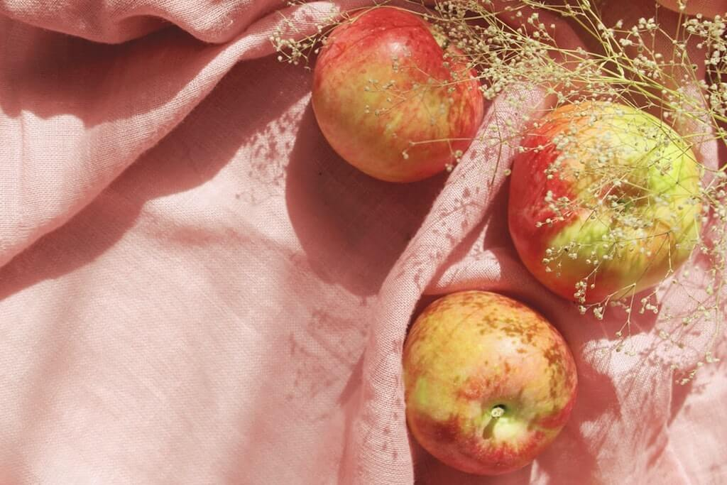 apple strudel recipe red apples on picnic blanket raw fruits delicious