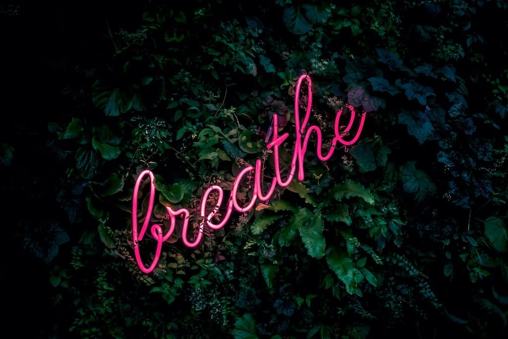 At-Home Activities in India neon sign breathe netherlands plant wall